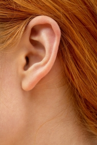 color closeup picture of redhead lady ear