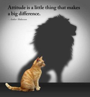attitudeisalittlething